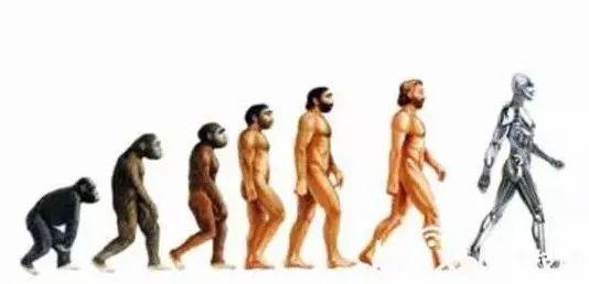 人类社会进化