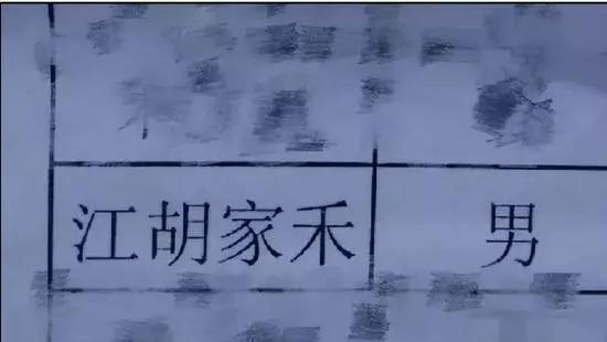 名字叫江胡家禾