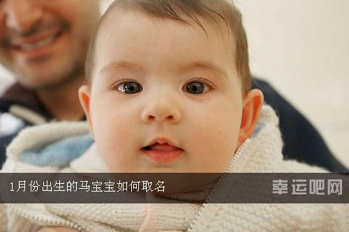 1月份出生的马宝宝如何取名
