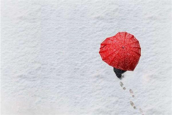 雪下撑伞独行-姓名的声调