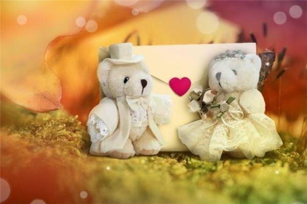 小熊玩偶一对