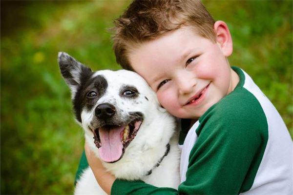 可爱宝宝与狗-男孩子名字技巧推荐分享