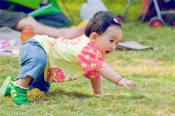 小宝宝在草地上爬-宝宝免费起名